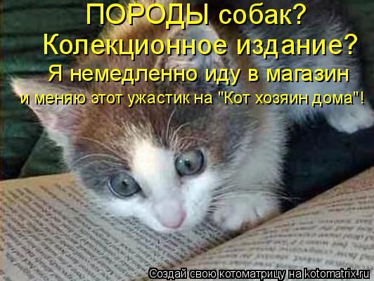 """Котоматрица: ПОРОДЫ собак? Колекционное издание? Я немедленно иду в магазин и меняю этот ужастик на """"Кот хозяин дома""""!"""