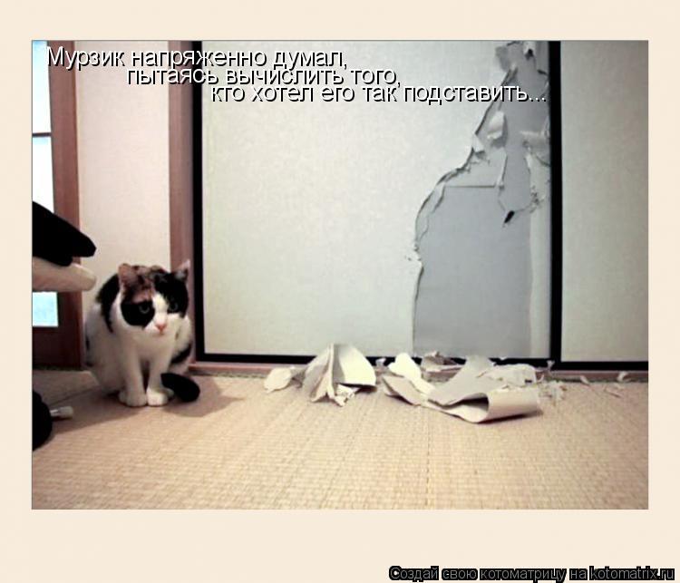 Котоматрица: Мурзик напряженно думал, пытаясь вычислить того,  кто хотел его так подставить...