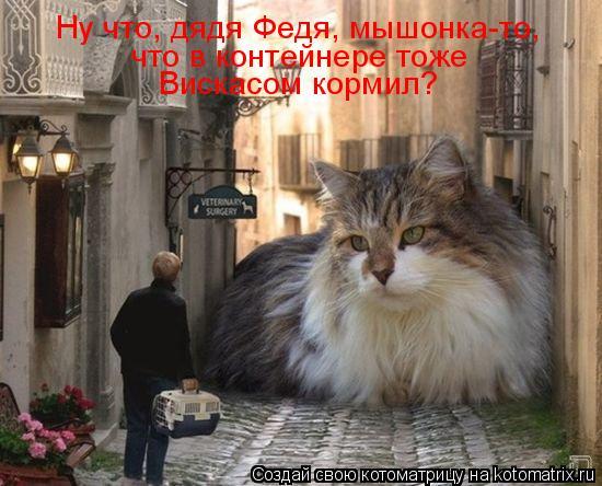 Котоматрица: Ну что, дядя Федя, мышонка-то,  что в контейнере тоже  Вискасом кормил?