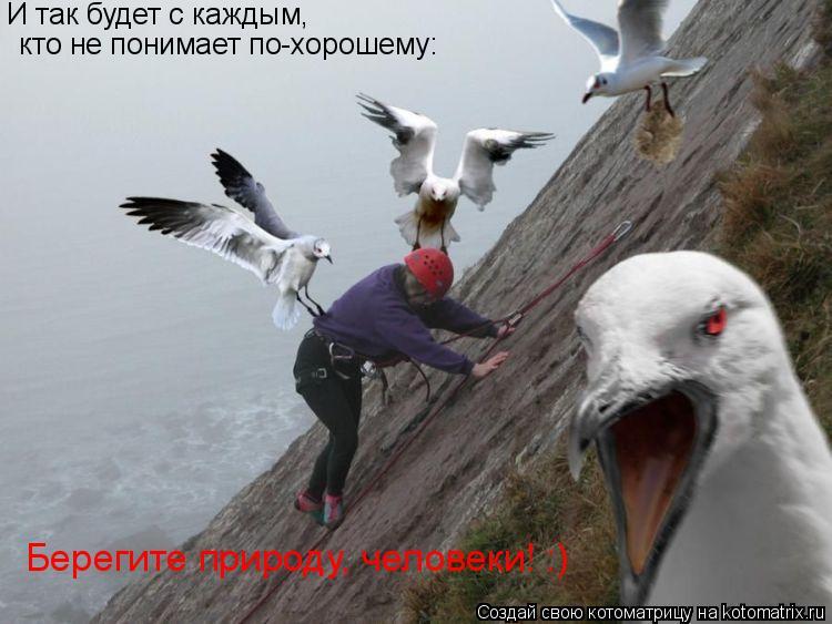 Котоматрица: И так будет с каждым,  кто не понимает по-хорошему: Берегите природу, человеки! :)
