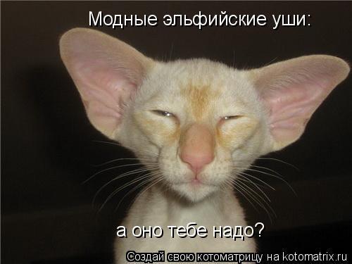 Котоматрица: Модные эльфийские уши: а оно тебе надо?