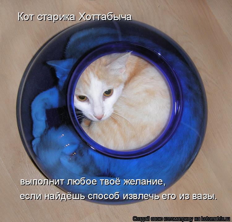 Котоматрица: Кот старика Хоттабыча выполнит любое твоё желание, если найдёшь способ извлечь его из вазы.