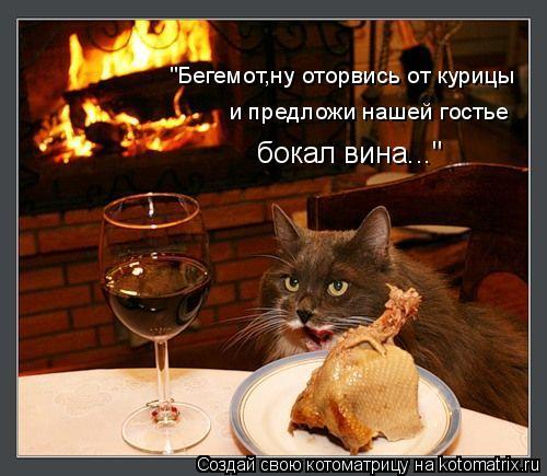"""Котоматрица: """"Бегемот,ну оторвись от курицы и предложи нашей гостье  бокал вина..."""""""