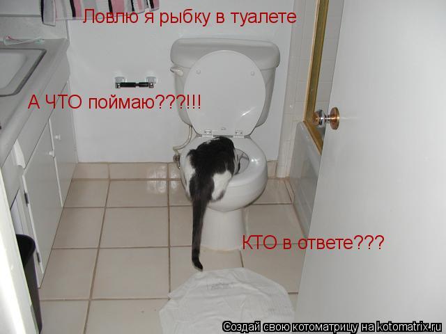 Котоматрица: Ловлю я рыбку в туалете А ЧТО поймаю???!!! КТО в ответе???
