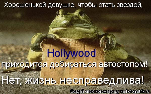 Котоматрица: Hollywood Хорошенькой девушке, чтобы стать звездой, приходится добираться автостопом! Нет, жизнь несправедлива!