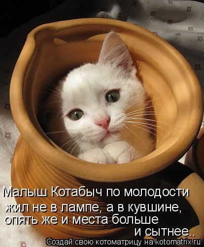 Котоматрица: Малыш Котабыч по молодости  жил не в лампе, а в кувшине,  опять же и места больше  и сытнее..