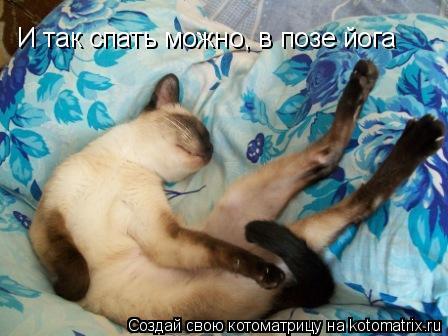 Котоматрица: И так спать можно, в позе йога