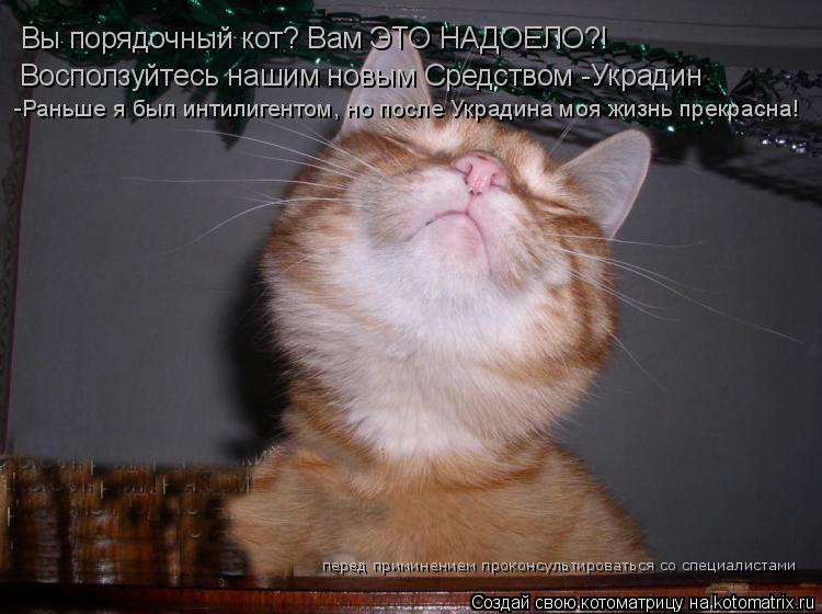 Котоматрица: Вы порядочный кот? Вам ЭТО НАДОЕЛО?! Восползуйтесь нашим новым Средством -Украдин -Раньше я был интилигентом, но после Украдина моя жизнь пр