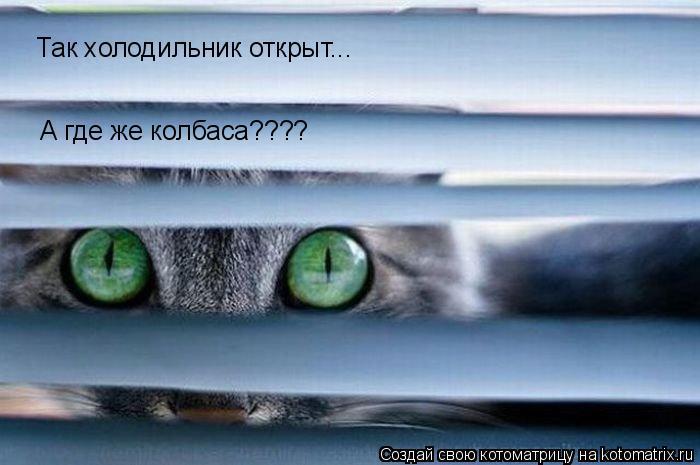 Котоматрица: Так холодильник открыт... А где же колбаса????