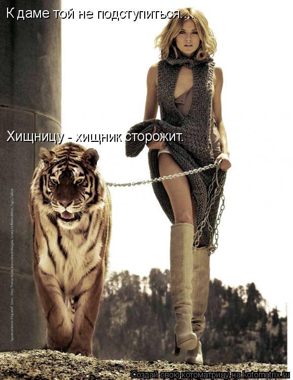 Котоматрица: К даме той не подступиться.... Хищницу - хищник сторожит.