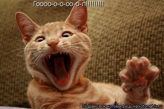 Котоматрица: Гоооо-о-о-оо-о-л!!!!!!!!!