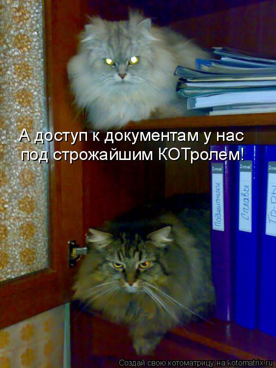 Котоматрица: А доступ к документам у нас  под строжайшим КОТролем!
