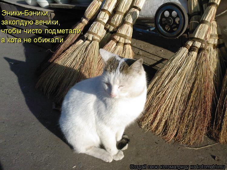 Котоматрица: Эники-Бэники, заколдую веники, чтобы чисто подметали, а кота не обижали.