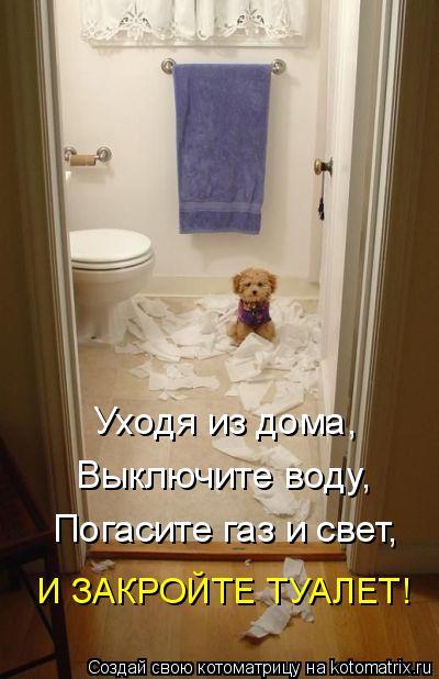 Котоматрица: Уходя из дома, Выключите воду, Погасите газ и свет, И ЗАКРОЙТЕ ТУАЛЕТ!