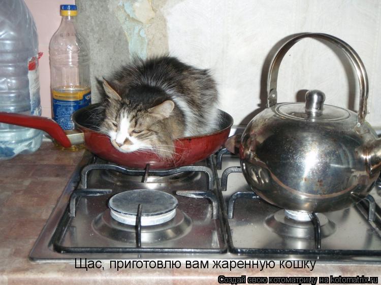 Котоматрица: Щас, приготовлю вам жаренную кошку
