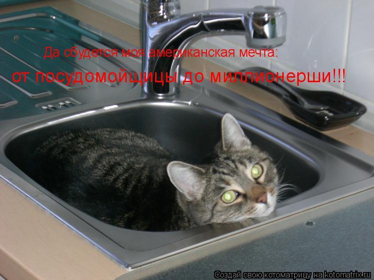 Котоматрица: Да сбудется моя американская мечта: от посудомойщицы до миллионерши!!!