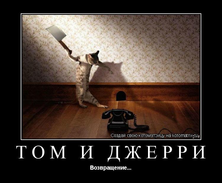 Котоматрица: Том и Джерри Возвращение...