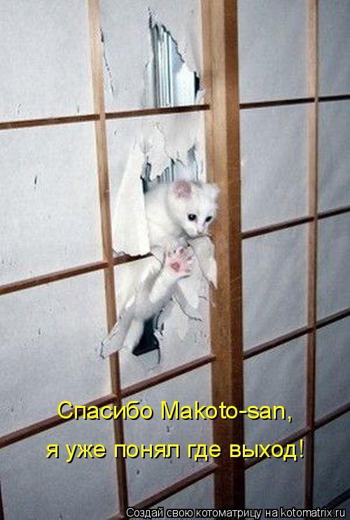 Котоматрица: Спасибо Makoto-san,  я уже понял где выход!