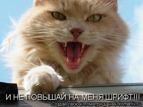 Котоматрица: И НЕ ПОВЫШАЙ НА МЕНЯ ШРИФТ!!!
