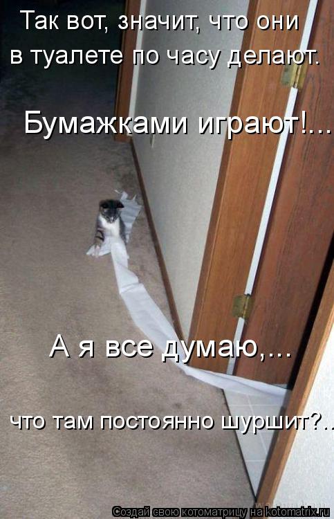 Котоматрица: Так вот, значит, что они   в туалете по часу делают. Бумажками играют!...  А я все думаю,...   что там постоянно шуршит?...