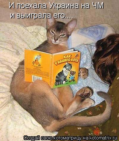 Котоматрица: И поехала Украина на ЧМ и выиграла его....