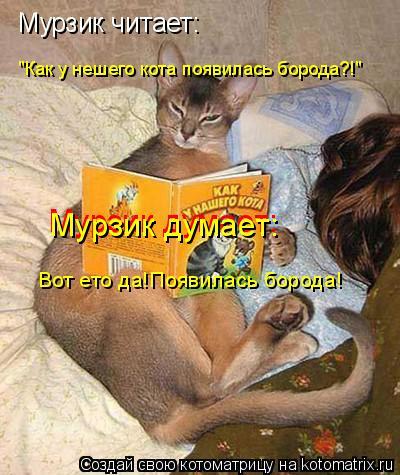 "Котоматрица: Мурзик читает: ""Как у нешего кота появилась борода?!"" Мурзик думает: Мурзик думает: Вот ето да!Появилась борода!"