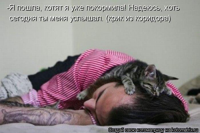 Котоматрица: -Я пошла, котят я уже покормила! Надеюсь, хоть сегодня ты меня услышал. (крик из коридора)