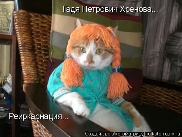 Котоматрица: Гадя Петрович Хренова... Реиркарнация...