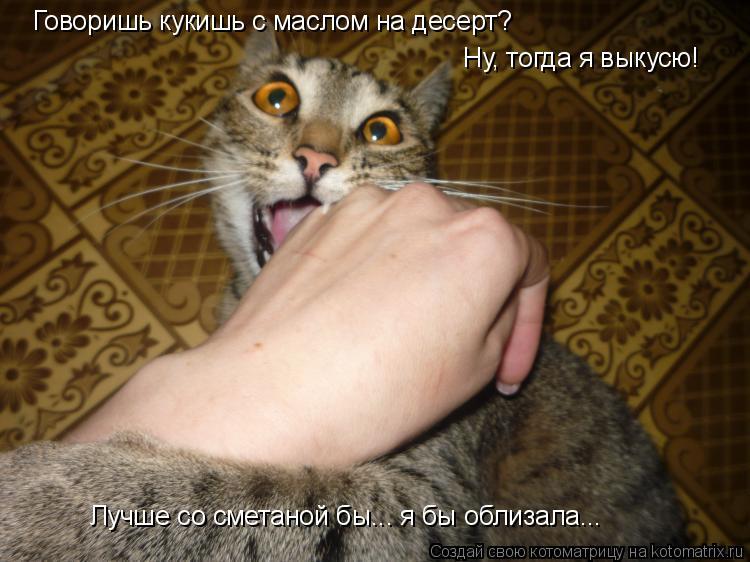 Котоматрица: Говоришь кукишь с маслом на десерт? Ну, тогда я выкусю! Лучше со сметаной бы... я бы облизала...