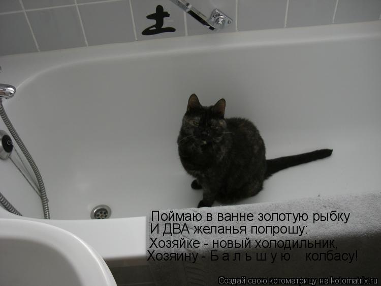 Котоматрица: Поймаю в ванне золотую рыбку  И ДВА желанья попрошу: Хозяйке - новый холодильник, Хозяину - Б а л ь ш у ю    колбасу!