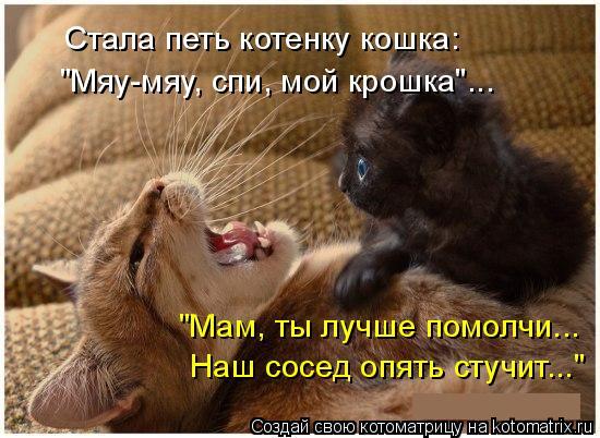 """Котоматрица: Стала петь котенку кошка: """"Мяу-мяу, спи, мой крошка""""... """"Мам, ты лучше помолчи... Наш сосед опять стучит..."""""""