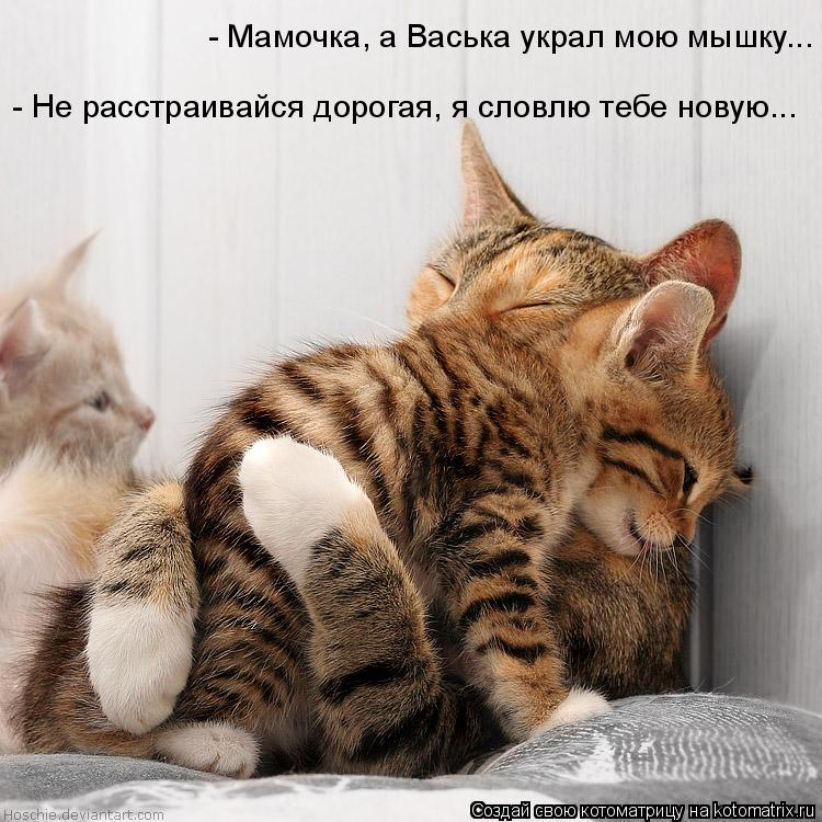Котоматрица - - Мамочка, а Васька украл мою мышку...  - Не расстраивайся дорогая, я