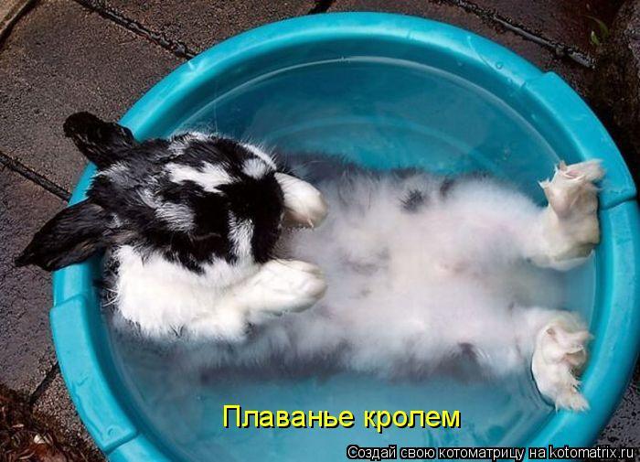Плаванье кролем