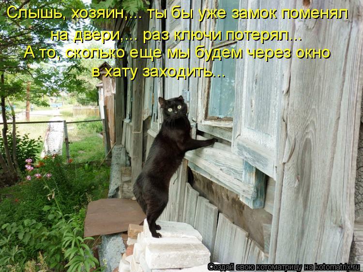 Котоматрица: Слышь, хозяин,... ты бы уже замок поменял  на двери,... раз ключи потерял...  А то, сколько еще мы будем через окно  в хату заходить...