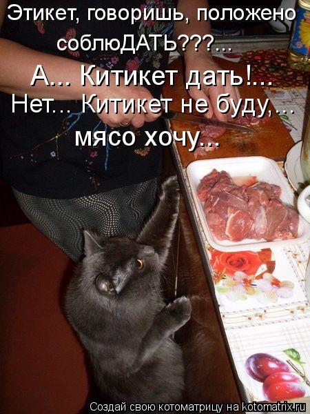 Котоматрица: Этикет, говоришь, положено  А... Китикет дать!...  Нет... Китикет не буду,...  мясо хочу... соблюДАТЬ???...