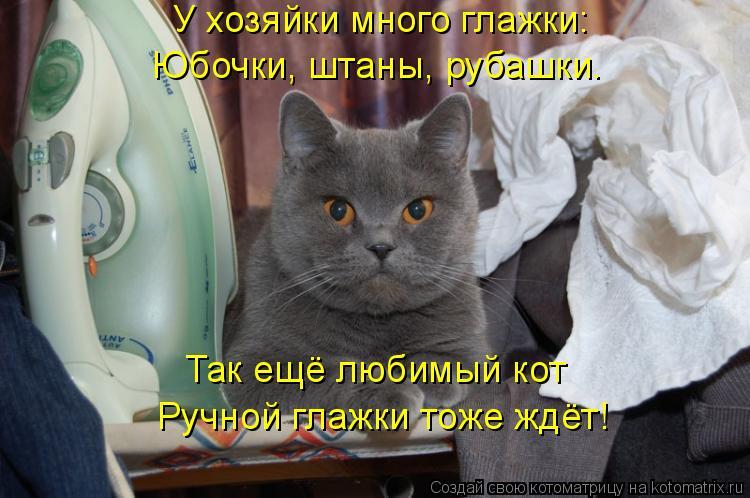 Котоматрица: У хозяйки много глажки: Юбочки, штаны, рубашки. Так ещё любимый кот Ручной глажки тоже ждёт!