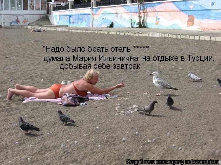 """Котоматрица: """"Надо было брать отель *****"""" думала Мария Ильинична на отдыхе в Турции,  добывая себе завтрак"""