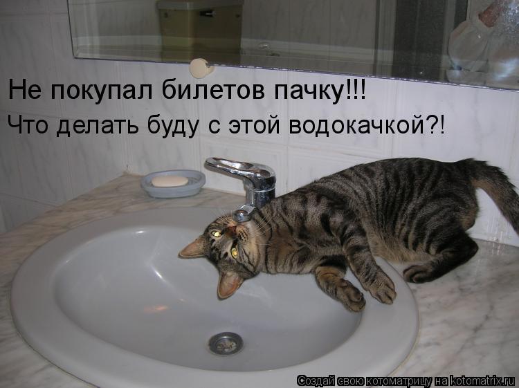 Котоматрица: Не покупал билетов пачку!!! Что делать буду с этой водокачкой?!
