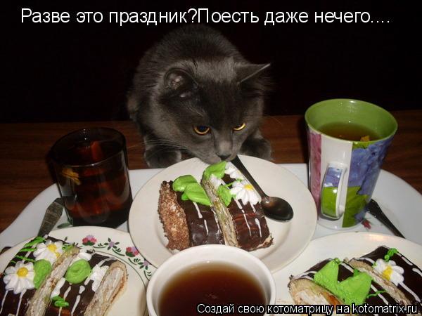 Котоматрица: Разве это праздник?Поесть даже нечего....