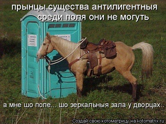 Котоматрица: прынцы существа антилигентныя среди поля они не могуть а мне шо поле... шо зеркальныя зала у дворцах..