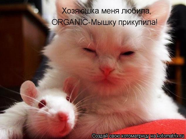 Котоматрица: Хозяюшка меня любила, ORGANIC-Мышку прикупила!