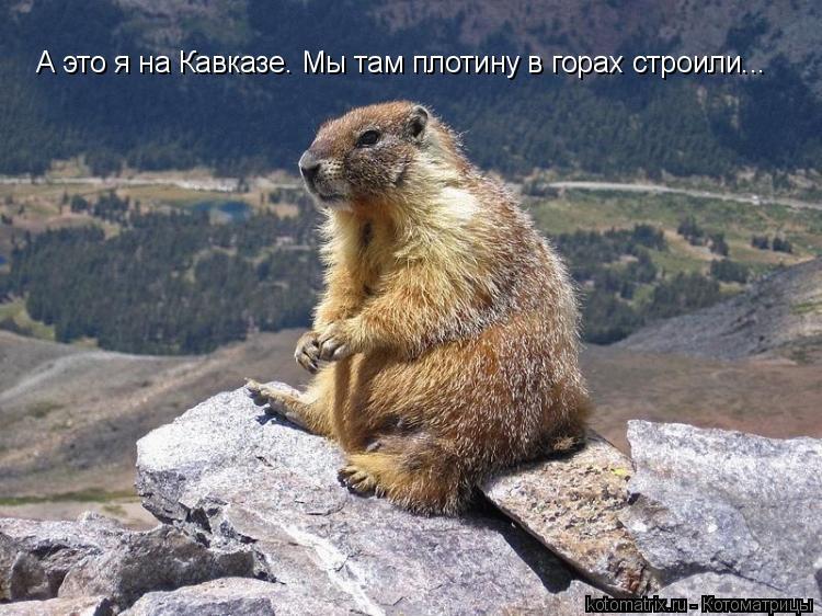 Котоматрица: А это я на Кавказе. Мы там плотину в горах строили...