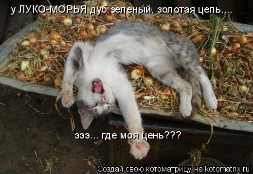 Котоматрица: у ЛУКО-МОРЬЯ дуб зеленый. золотая цепь.... эээ... где моя цень???