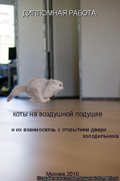 Котоматрица: ДИПЛОМНАЯ РАБОТА коты на воздушной подушке и их взаимосвязь с открытием двери холодильника Москва 2010
