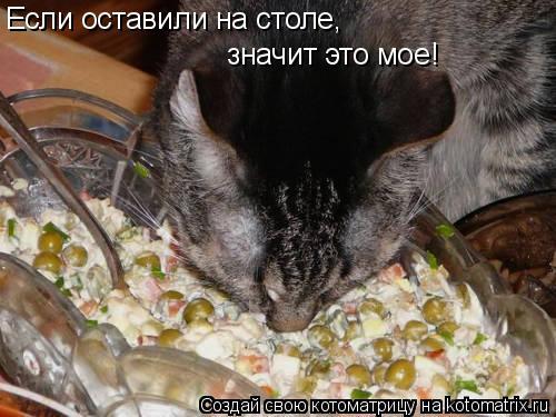 Котоматрица: Если оставили на столе, значит это мое!