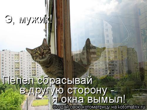 Котоматрица: Э, мужик! Пепел сбрасывай  в другую сторону -  я окна вымыл!