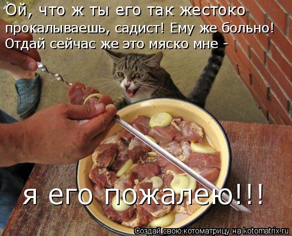 Котоматрица: Ой, что ж ты его так жестоко прокалываешь, садист! Ему же больно! Отдай сейчас же это мяско мне - я его пожалею!!!