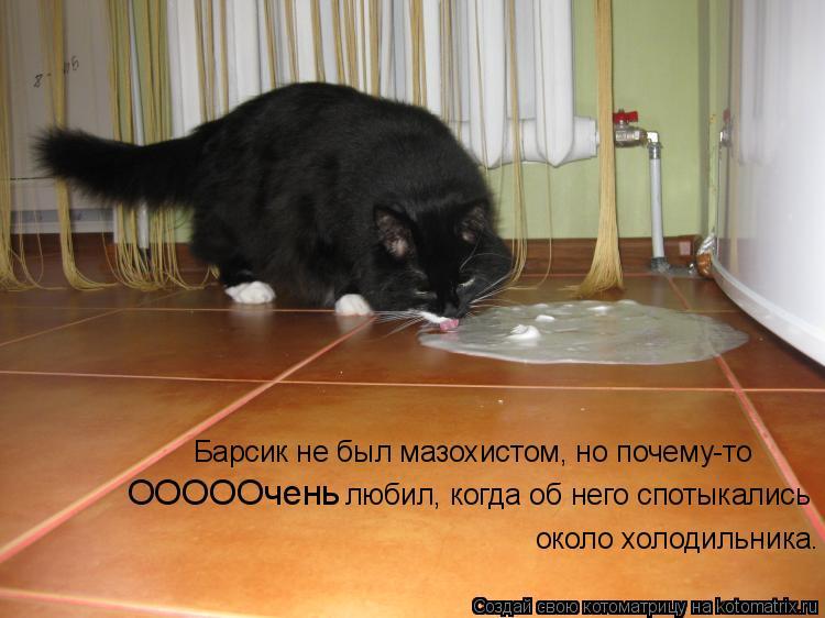 Котоматрица: Барсик не был мазохистом, но почему-то ОООООчень любил, когда об него спотыкались около холодильника.