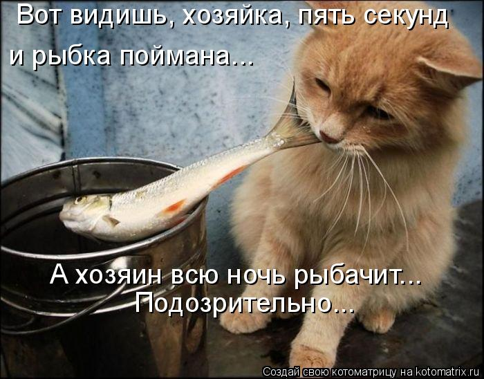 Котоматрица: Вот видишь, хозяйка, пять секунд  и рыбка поймана... Подозрительно... А хозяин всю ночь рыбачит...