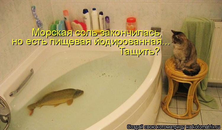 http://kotomatrix.ru/images/lolz/2010/07/06/621669.jpg